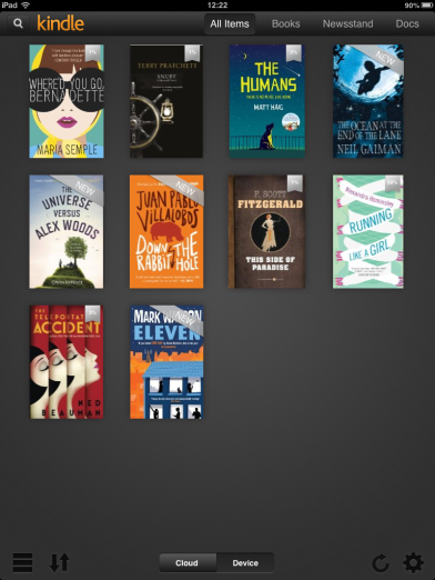 Holiday Kindle reading