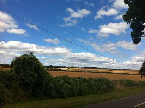 hampshire summer run (4)